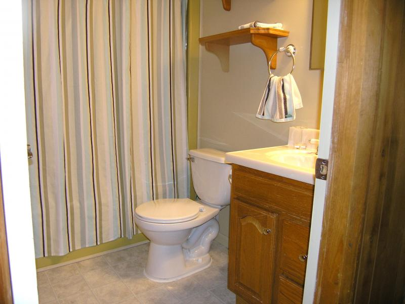 Upper Level - bath with tub/shower combo!